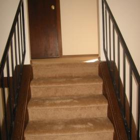 carpet01